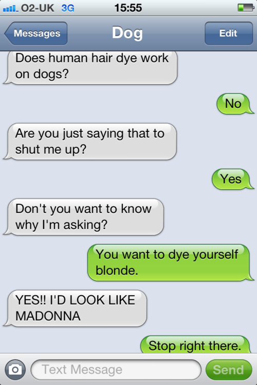 tumblr m2dg69ocww1rt9zy5o1 500 - texts from dog.