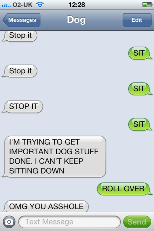 tumblr m3ntlhtif81rt9zy5o1 500 - i can't come up with anymore interesting titles, so here's texts from dog.
