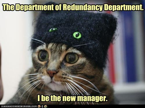 u is the manager - some more funneh cat pics