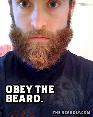 vertical beardly obey