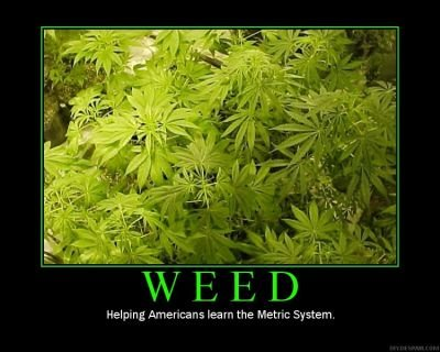 weed motivational poster