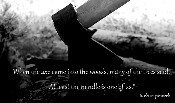 when axe came into woods turkish proverb