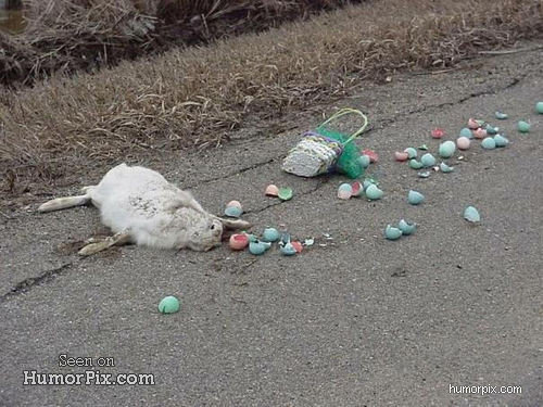 who killed easter bunny size
