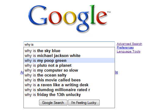 why google searches