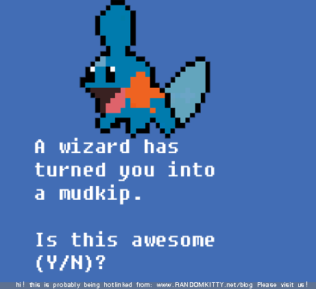 wizard turned mudkip