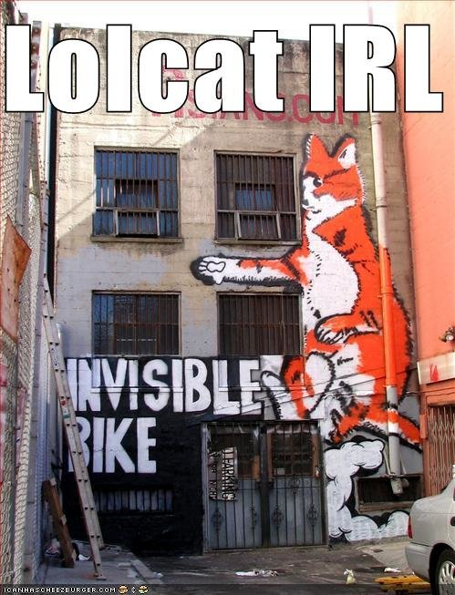 worlds largest lolcat mural irl