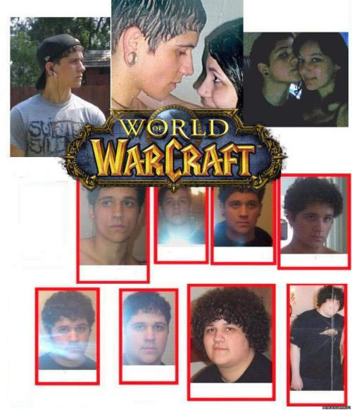 wowlol - the evolution of the wow user