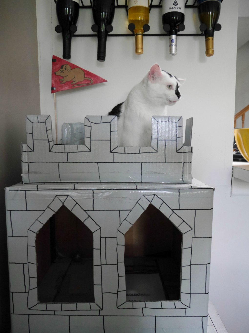 xz3yxzt - why don't we build cardboard castle to our cats? this is how to do it.