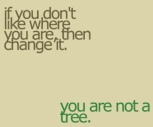 are not tree